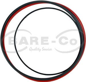 Picture of Liner Seal Kit for 6-466 Engine - B693