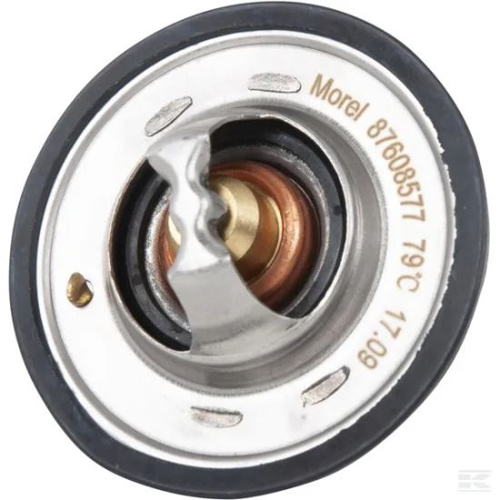 Picture of Thermostat - KR-98463637GP